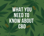 What is CBD?- CBDとは –